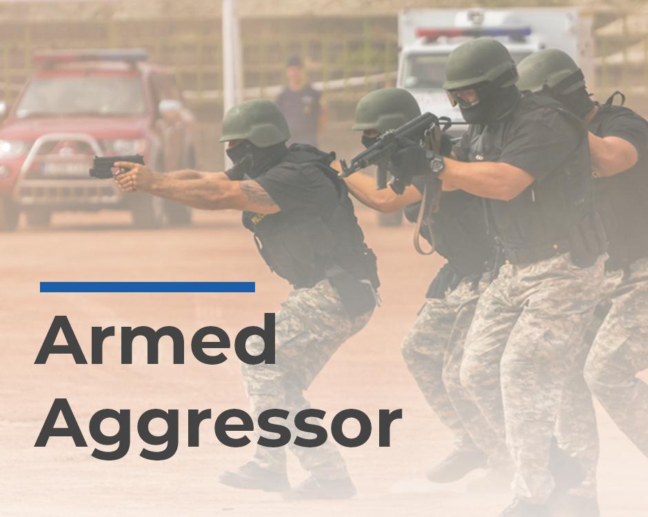 Armed Aggressor